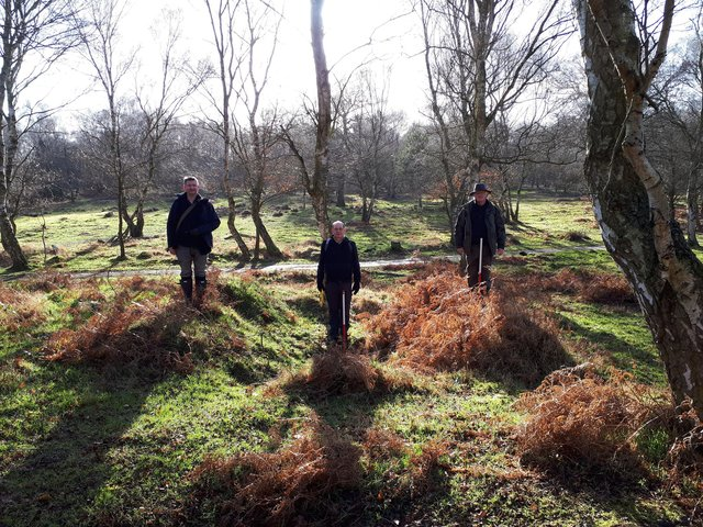 A military bunker pit being investigated in Sherwood Forest