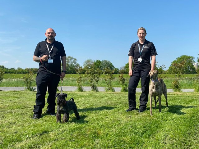 Newark & Sherwood District Council's community protection officers Andrew Weaver and Lauren Astle with Herbie and Scout respectively. Photo: Newark & Sherwood District Council.