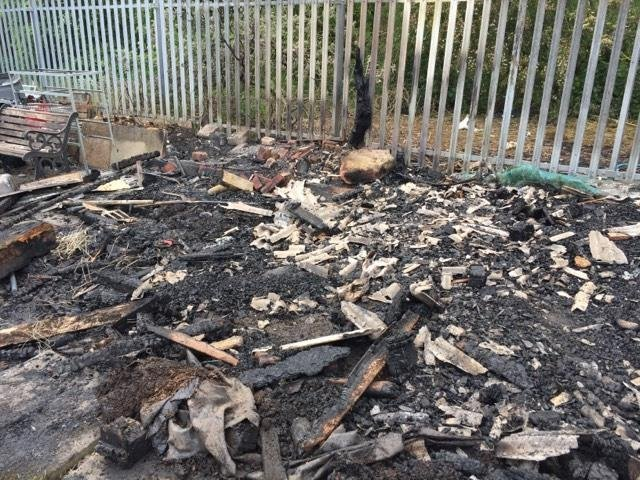 Sheds were burned to the ground in the incident at Lane End Allotments in Sutton on Friday. Photo: Gill Brunt.