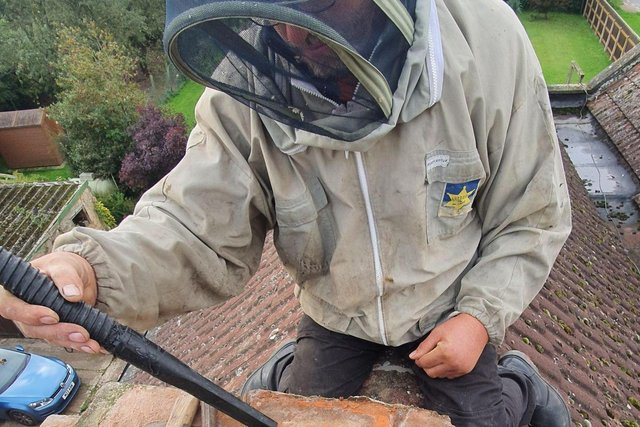 A beekeeper on a roof removing a bees nest. Photo: Mansfield Honey Bees