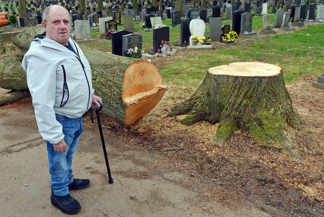 John Smith who is concerned at the loss of bird habitat at St Mary's after trees were cut down.