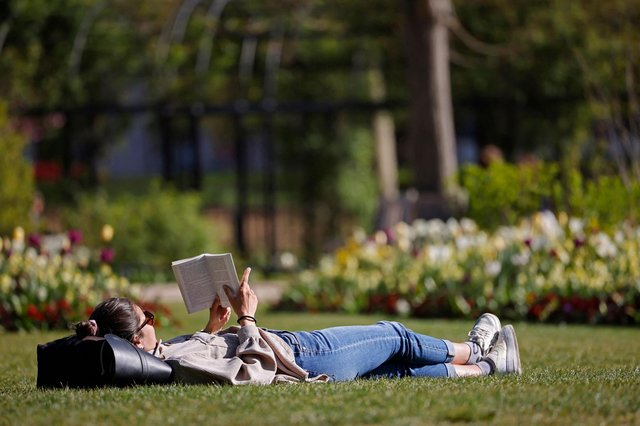 A woman reads a book on the grass (Photo by TOLGA AKMEN/AFP via Getty Images)