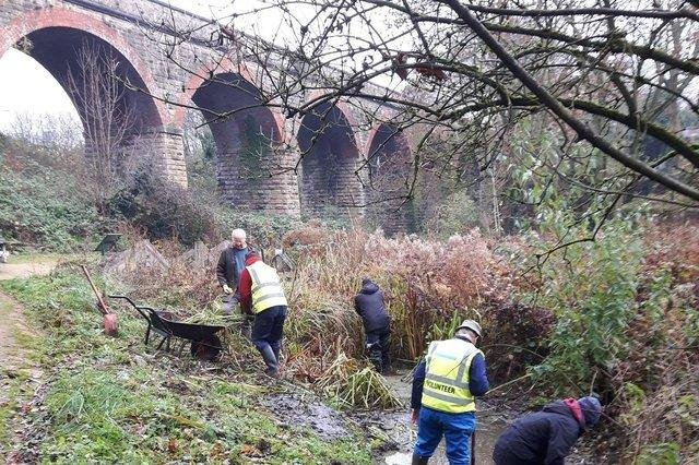 Wildlife volunteers working in the area close to where 200 homes had been planned for the former Gregory Quarry site in Mansfield.