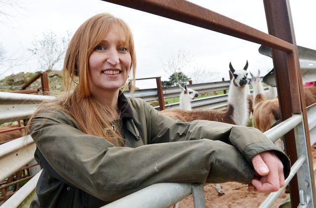 Carnfield Hall's owner Heidi Price with the llamas.