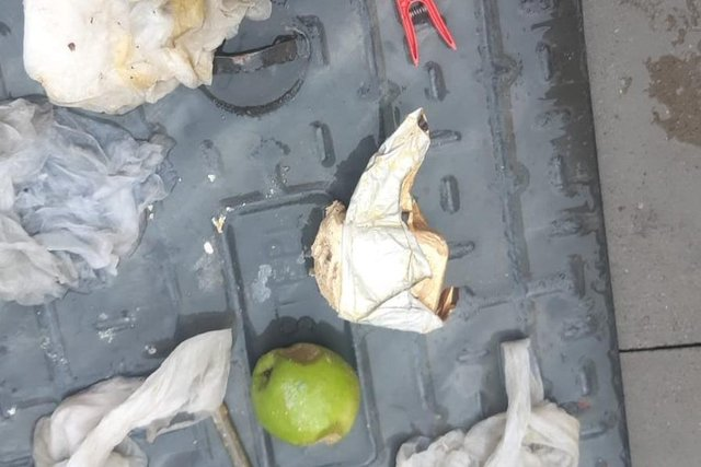 Apples and butter were found blocking pipes.